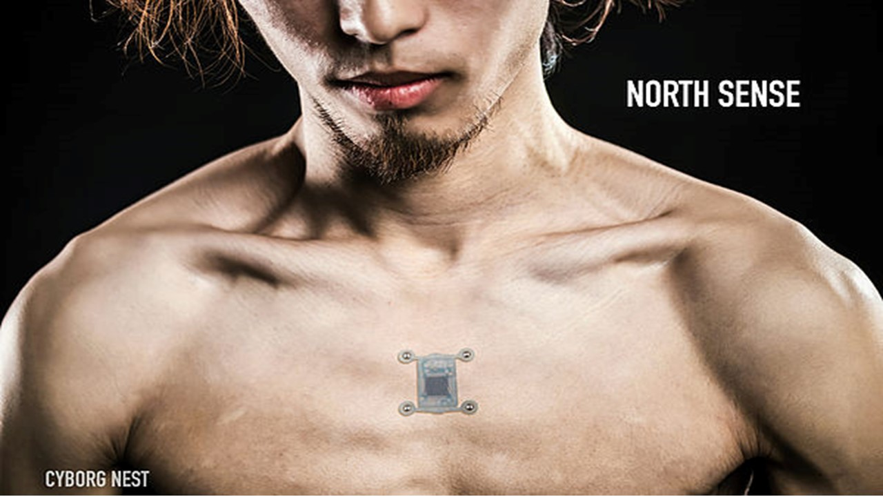 2016. North Sense, Cyborg Nest.