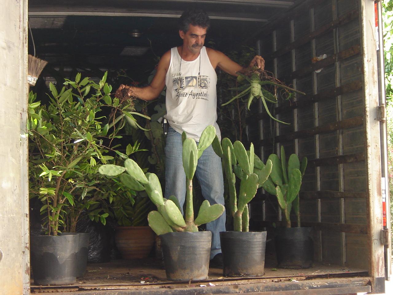 Mudas chegando. Plantio Jardim Didático, 2006.